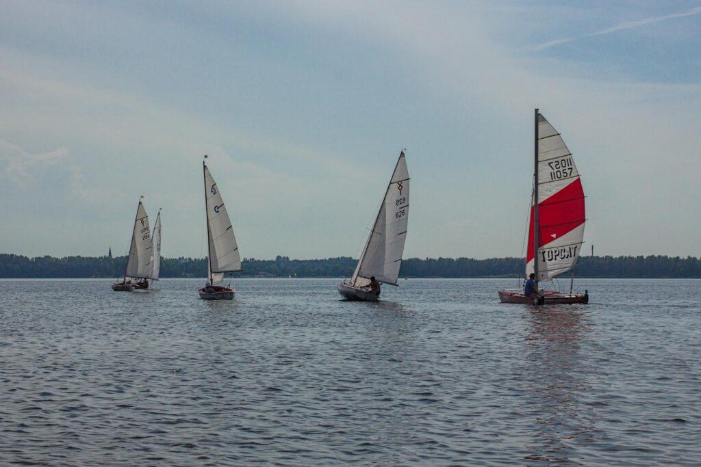 Katamaran fahren und segeln auf dem Muldestausee beim Muldesegler e.V.